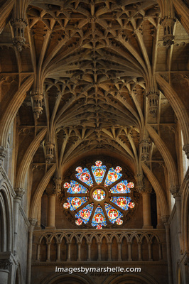 Christ Church Chapel ceiling and rosette window