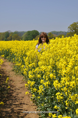 Lauri in the rapeseed field